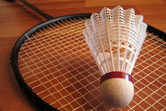 badminton_racket_small.jpg